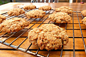 Coconut, Oat and Almond Cookies